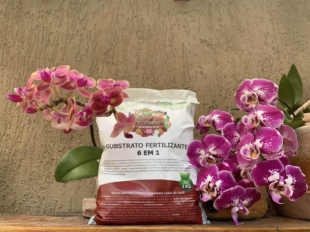 Orquídeas floridas com o Substrato Fertilizante 6 em 1 do Jardineiro Amador