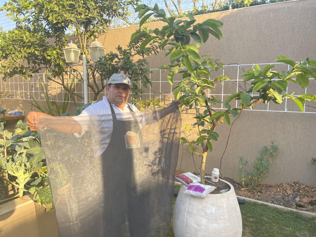 como-proteger-as-plantas-do-frio-e-geadas